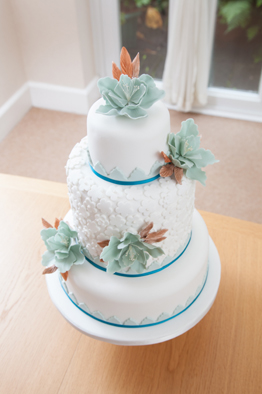 Sample Cake 2