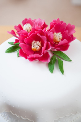 Sample Cake 11