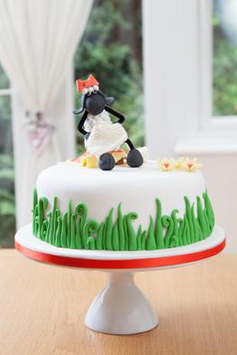 Sample Cake 12