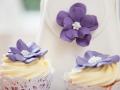 Sample Cake 17